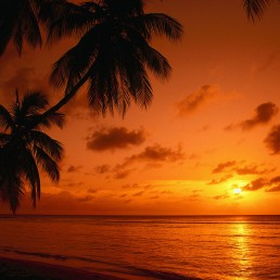 978746__tropical-sunset_p