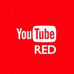 Arriva la nuova versione di Youtube priva di pubblicità. Quanti utenti sarebbero disposti a pagare per averla?