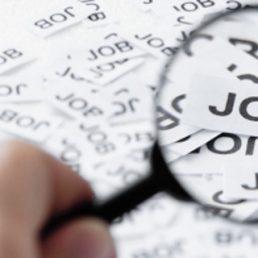 Quale sia il bilancio del 2015 per le offerte di lavoro in Campania lo dice l'Osservatorio di Infojobs, una società di recruitment online.