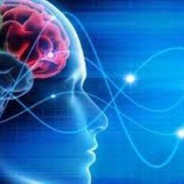 Le parole, vocalizzando pensieri, emozioni e giudizi, modificano il cervello, guidano le azioni e i comportamenti e, cambiano la vita.