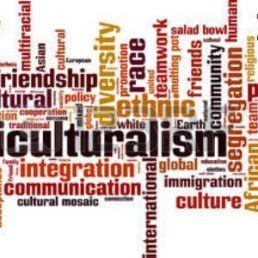 La multiculturalità è un fenomeno di imprescindibile importanza e di improrogabile urgenza nell'attuale scenario aziendale, sempre più global.