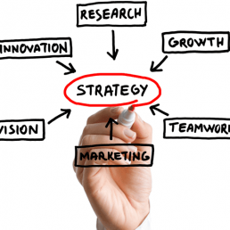 Avere una strategia digitale nel B2B è oggi fondamentale. Gli strumenti possono variare, ma alcune attività sono indispensabili. Ecco quali